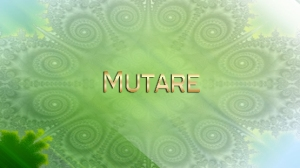 2013-IrisAtma-01-img-Mutare-web